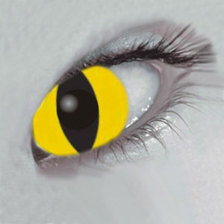 Yellow Cat Coloured Contacts (Comfort)