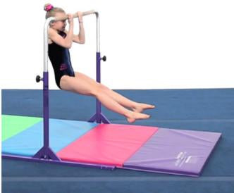 Junior Mini High Bar With Mat