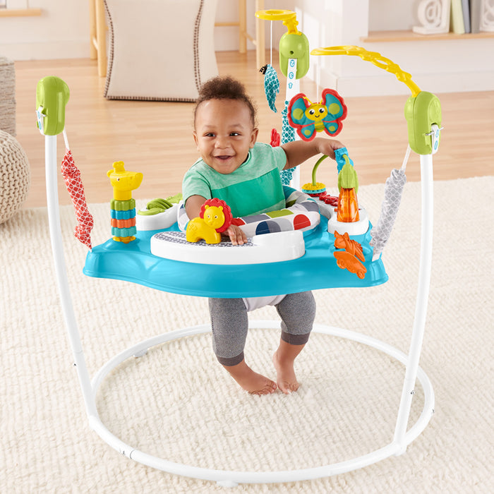Fisher-Price Jumperoo Colour Climber