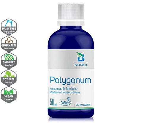 Polygonum 50 ml - Arthritis, Rheumatism, and Gout