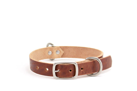 Buckley Dog Collar