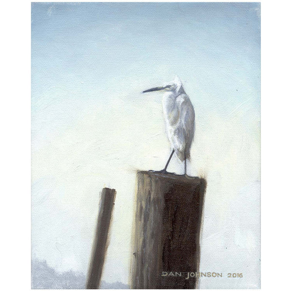 Egret watch