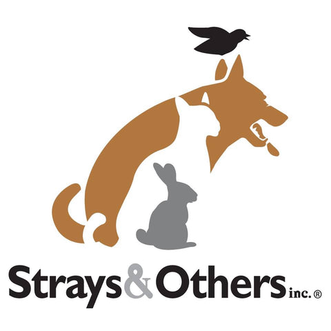 Strays & Others