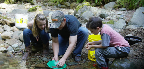 Prospectors Panning For Gold