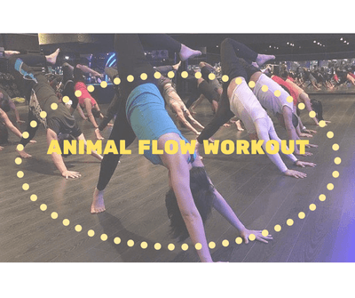 The Animal Flow- The Body Weight Workout by Kaman Ryan