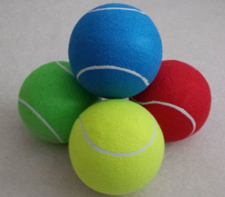 Like the ones here - Our version is yellow - Dog Toy