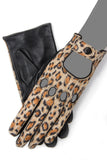Cheetah - Gaspar Gloves