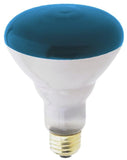 Westinghouse 0466800 75 Watt BR30 Incandescent Light Bulb