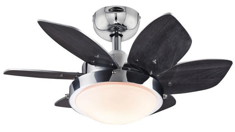 Westinghouse 7863100 Quince 24-Inch Reversible Six-Blade Indoor Ceiling Fan