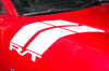 Dodge Charger Car Vinyl Decal Custom Graphics White Hood Hash Design