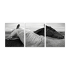 Image of Black & White Horse Love Wall Art 16x20