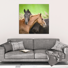 Black & Brown Horse Love Framed Wall Art
