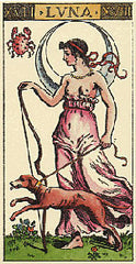 Tarot & Playing Cards