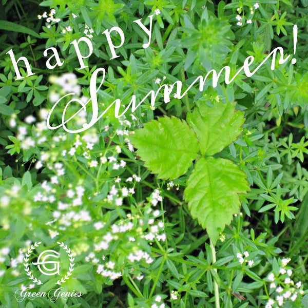 Happy Summer from Green Genies!