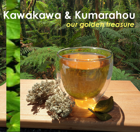 Kawakawa & Kumarahou  Our golden treasure