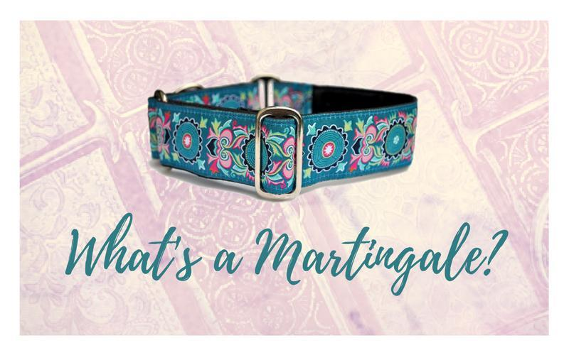 what is a martingale collar
