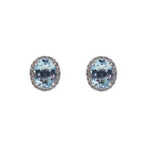 Top Sky Blue Topaz Fine Earrings