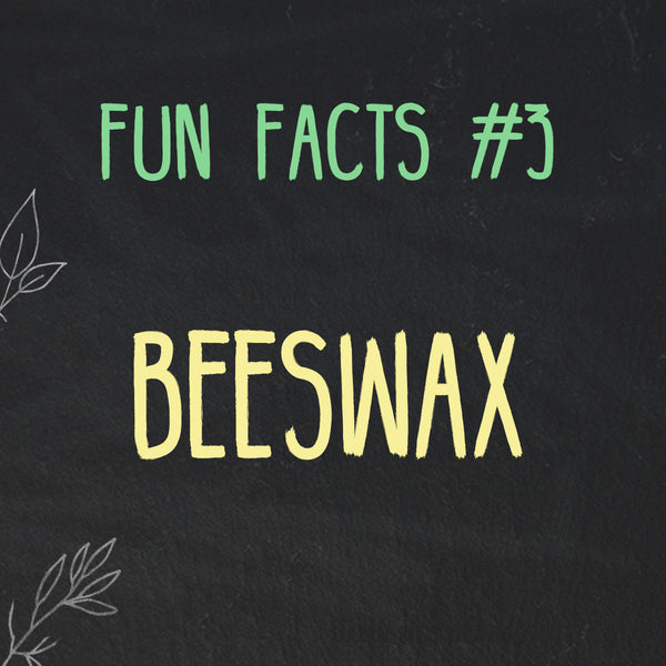 Fun Facts about Beeswax