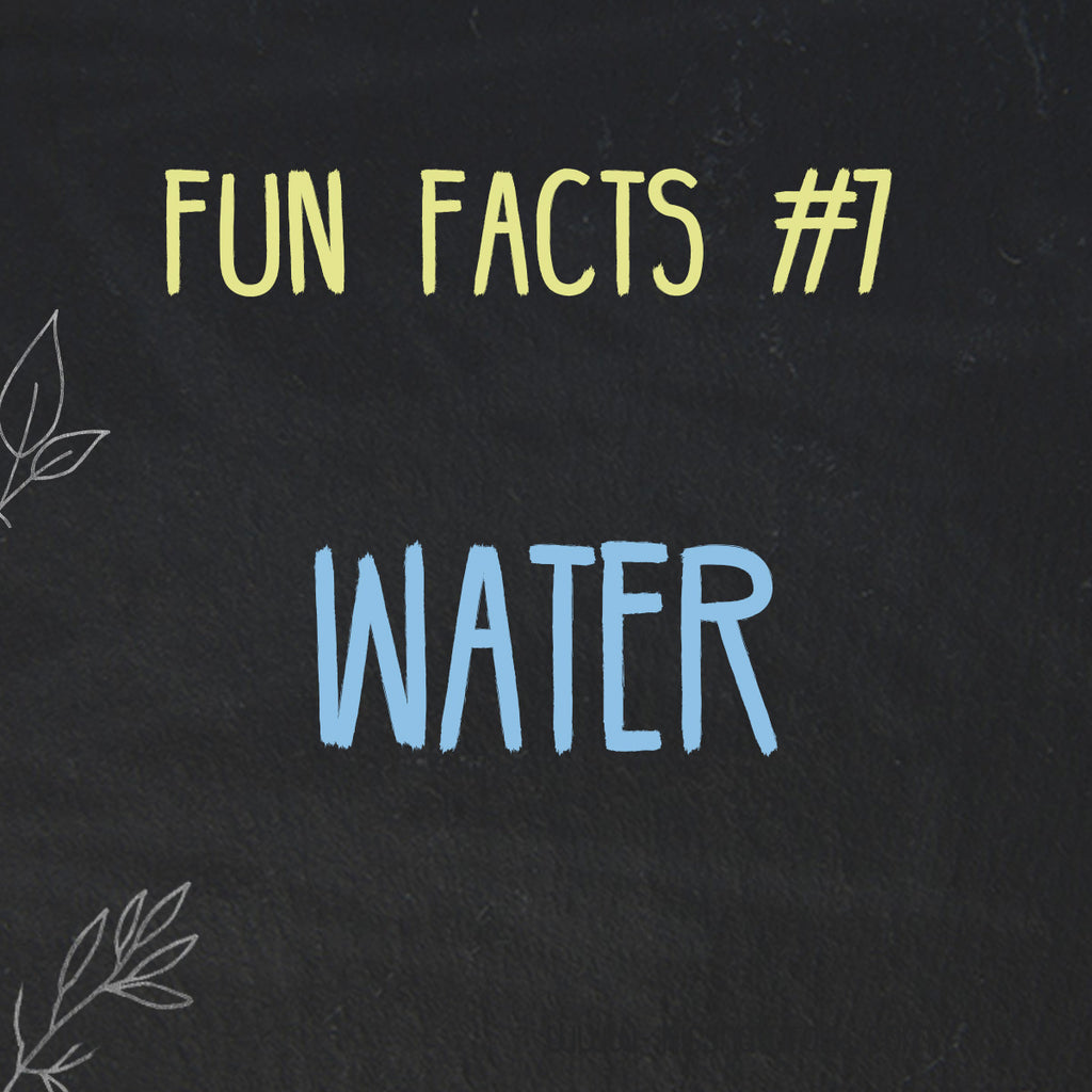 Fun Facts about Water
