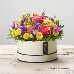 Beaming Brights Hatbox