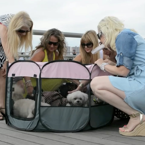 Pet Tent, Dog Tent, Cat Tent