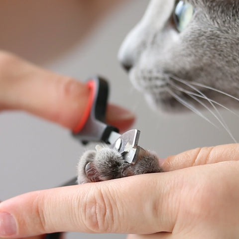Pet Clever Grooming Nail Clippers