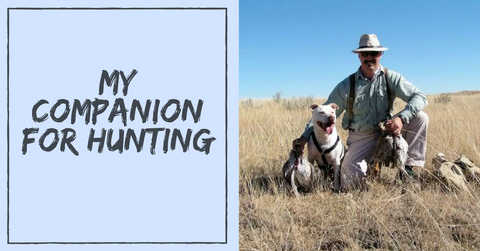 best dog breed companion for hunting pet clever