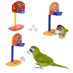 3pcs Basketball Hoop Chew Parrot Toys Birds & Parrots Pet Clever