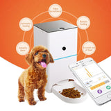 Automatic Feeder Timely Quantitative Remote Pet Feeding Food-grade Cat Bowls & Fountains Pet Clever