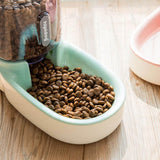 Automatic Pet Drinking Bowl and Feeder Cat Bowls & Fountains Pet Clever