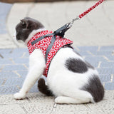 Cat Vest Harness and Leash Set Artist Collars & Harnesses Pet Clever