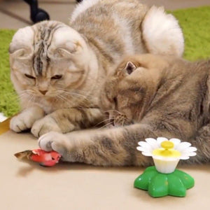 Cute Electric Butterfly/Bird Cat Teaser Toy Cat Toys Pet Clever