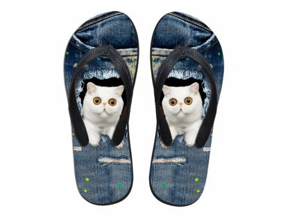 Cute Hypnotized Cat Print Flip Flops Slippers Cat Design Footwear Pet Clever US 5 - EU35 -UK3