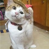 Cute Straw Hat Design Cat Clothing Pet Clever