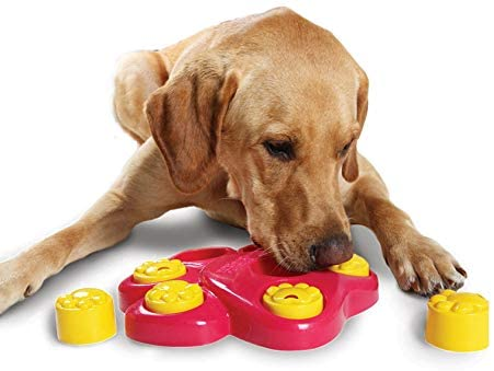 Dog Interactive Games Puzzle Toys Food Dispenser Toys Pet Clever