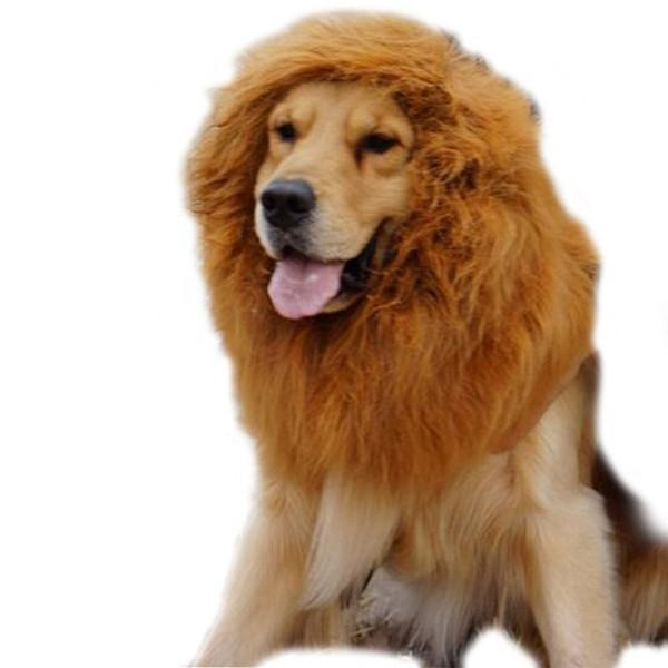 Dog Lion Wigs Dog Design Accessories Pet Clever