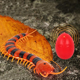 Electric Centipede Cat Teaser Toy with Remote Cat Toys Pet Clever