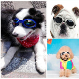 Eye Protection Goggles For Dog Dog Carrier & Travel Pet Clever