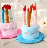 Fashion 3D Birthday Cake with Candles Pet Hat Hats Pet Clever