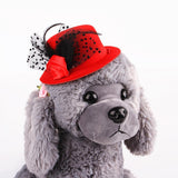 Feather Prince Style Hat For Pets Hats Pet Clever