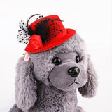 Feather Prince Style Hat For Pets Hats Pet Clever Red