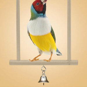 Hanging Swing Bird Stand Toy Standing Birds Pet Clever