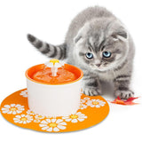 Keep Your Cats Hydrated All The Time! Cat Bowls & Fountains Pet Clever Orange