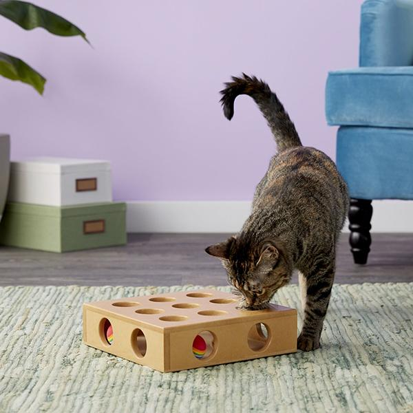 Keep Your Feline Happy While You're Not Home Cat Toys Pet Clever