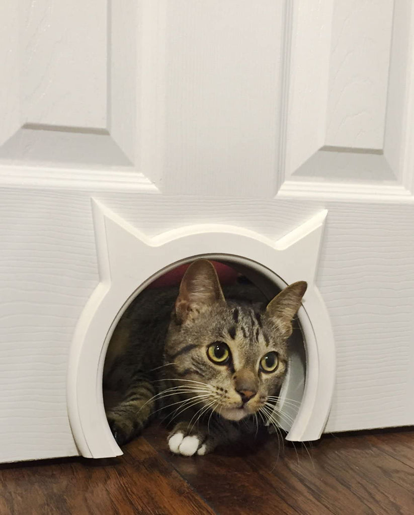 Kitty Door Pass Cat Pet Clever