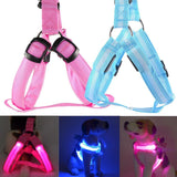 LED Flashing Light Pet Harness Dog Leads & Collars Pet Clever