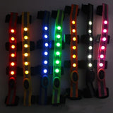 LED Horse Halter Decoration Horse Halter Pet Clever