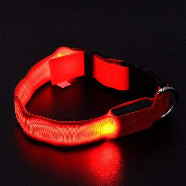 LED Light-up Flashing Glow In The Dark Collar Dog Leads & Collars Pet Clever XS Red