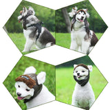 Pet Canvas Cap Hats Pet Clever