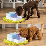 Pet Clever Drinking Fountain For Freshest Water! Cat Bowls & Fountains Pet Clever